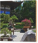 Bonsai Garden Wood Print
