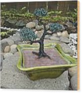 Bonsai Tree Green Medium Wood Print