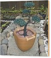 Bonsai Tree Medium Brown Square Planter Wood Print