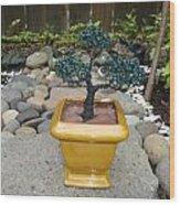 Bonsai Tree Medium Square Golden Vase Wood Print