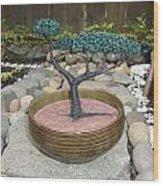 Bonsai Tree Round Brown Planter Wood Print
