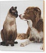 Border Collie & Siamese Cat Wood Print