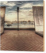 Boston - David Von Schlegell - Untiltled Wood Print