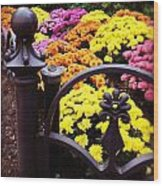 Boston Flowers Wood Print