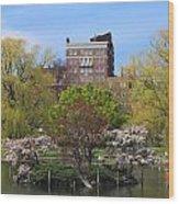 Boston Public Garden Pond In Spring Wood Print