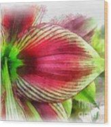 Botanical 01 Wood Print