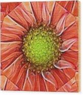Botanical Swirl Wood Print