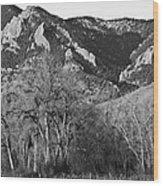 Boulder Colorado Front Range Ncar View Wood Print