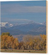 Boulder County Colorado Continental Divide Autumn View Wood Print by James BO  Insogna
