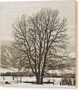 Boulder County Wood Print