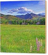 Boulder Park View Wood Print