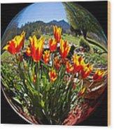 Bouquet In A Bubble Wood Print