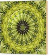 Bouquet Of Roses Kaleidoscope 11 Wood Print
