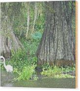 Bow Legged Egret Wood Print