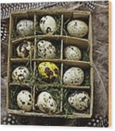 Box Of Quail Eggs Wood Print