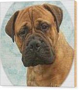 Boxer 493 Wood Print