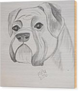 Boxer No Crop Wood Print by Maria Urso