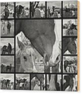 Boy Meets Horse Wood Print