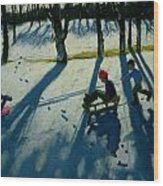 Boys Sledging Wood Print by Andrew Macara