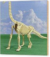 Brachiosaurus Dinosaur Skeleton Wood Print