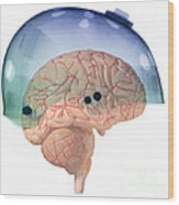 Brain In Skateboard Helmet Wood Print