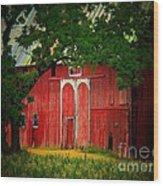Branch Over Barn Door Wood Print