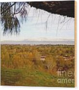 Branch Over River Bed Wood Print