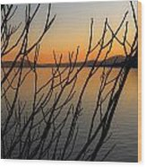 Branches In The Sunset Wood Print