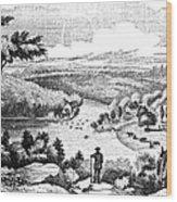 Brandywine Battlefield Wood Print