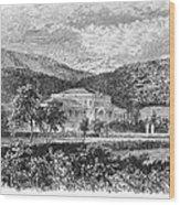 Brazil: Emperors Palace Wood Print