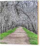 Brazos Bend Pass Wood Print