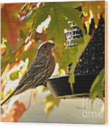 Breakfast With A View Wood Print