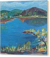 Breakwater On The Great Sacandaga  Wood Print