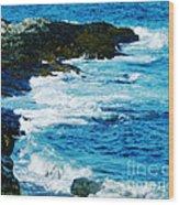 Brenton Point State Park Newport Ri Wood Print