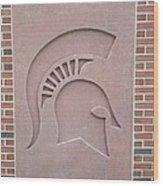 Brick Wood Print