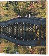 Bridge 3 Wood Print