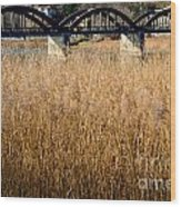 Bridge And Pampas Grass Wood Print