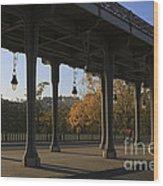 Bridge Of Bir Hakeim In Paris Wood Print