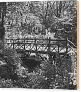 Bridge Of Centralpark In Black And White Wood Print