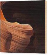 Bridge Of The Light Wood Print