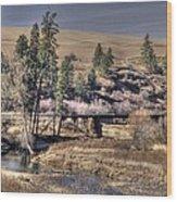Bridge Over A Creek Wood Print