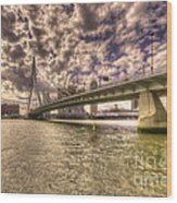 Bridge Over Rotterdam  Wood Print