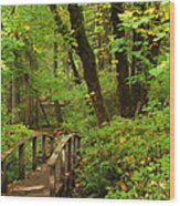 Bridge To A Fairytale Wood Print