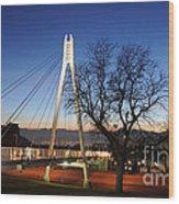 Bridge To Twilight Wood Print