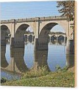 Bridge Upon Bridge Wood Print