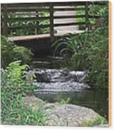 Bridging The Gap Wood Print