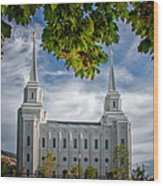 Brigham City Temple Leaves Arch Wood Print