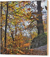 Bright Leaves Wood Print