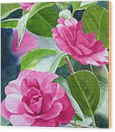 Bright Rose-colored Camellias Wood Print by Sharon Freeman