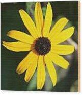 Bright Yellow Wood Print